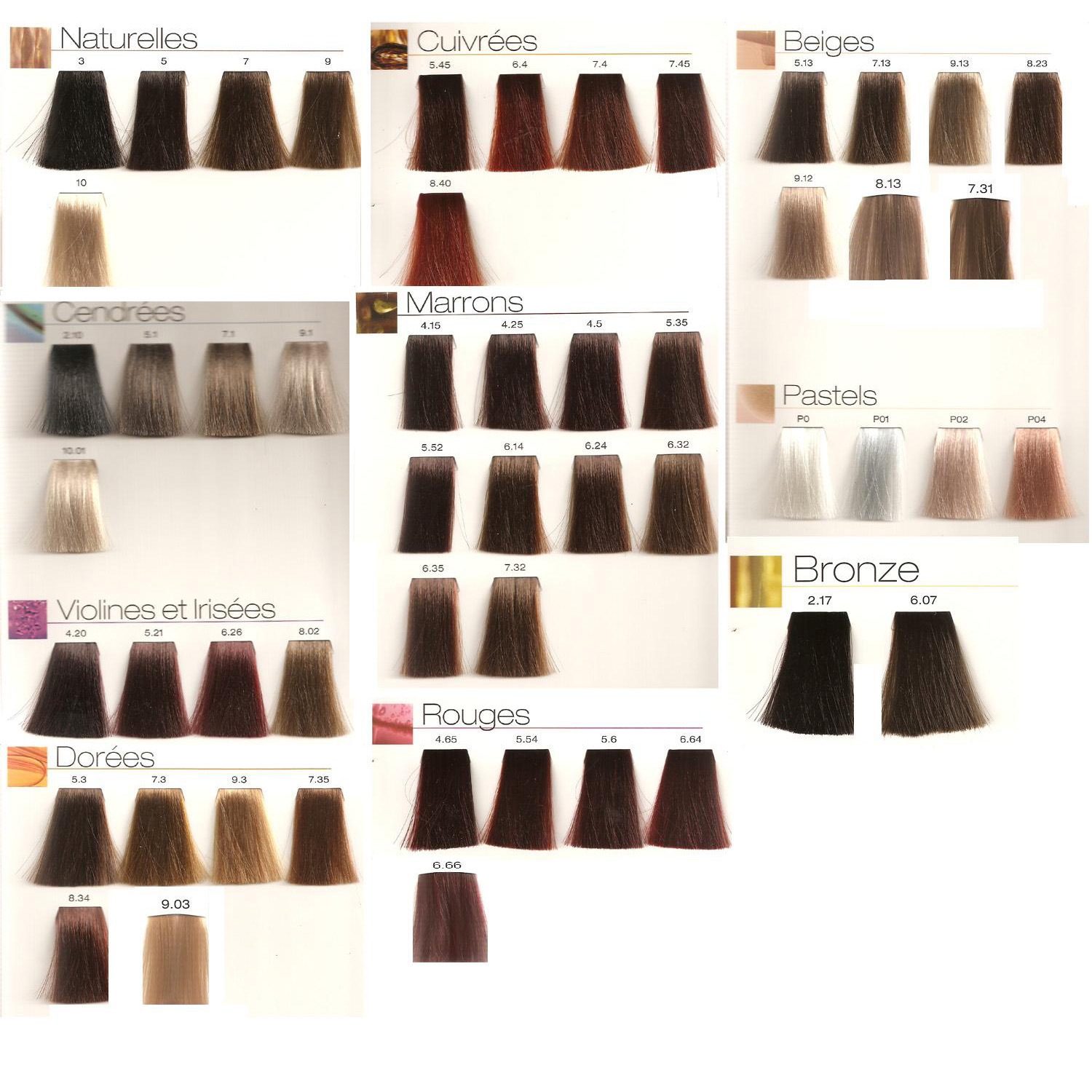 chocolate cats l or 233 al professionnel majirel cool cover loreal richesse hair color chart loreal dia richesse color chart brown hairs